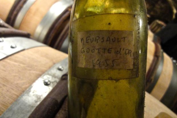 Meursault La Goutte d'Or 1955
