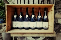 I vini di Georges Chicotot